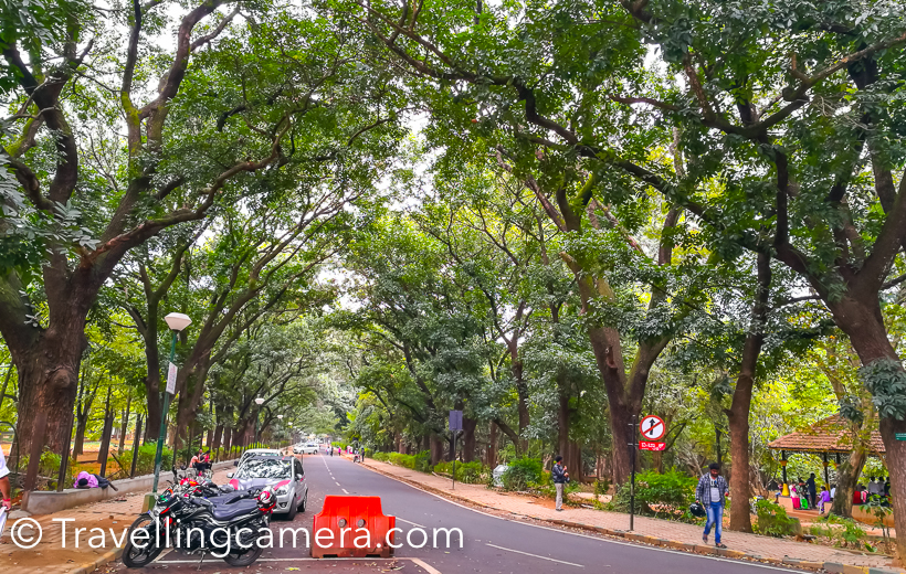 Cubbon Park is just opposite to Chinnaswamy Stadium in Bengauru. This is one of the inside roads which connects to Government Museum on other end. It's called Queens Road. There is also a kids zone at the end of this road and other side of Cubbon Park.