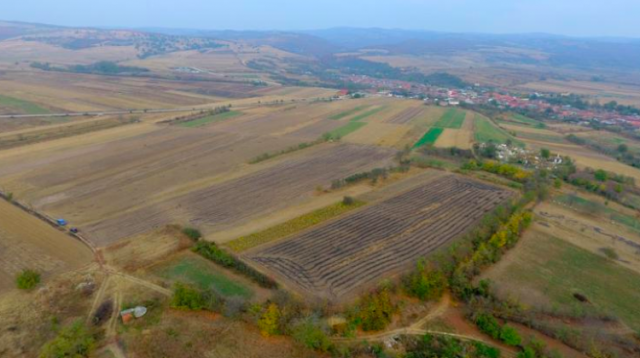 Layout of Roman fort in Romania's Pojejena determined