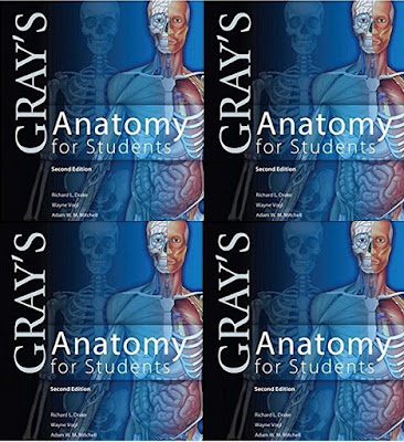 grays anatomy for students 3rd edition pdf free download
