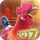 Download Game Ayam Jago Mod Apk v1.6.0 Unlimited Money Gratis