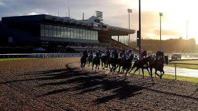 Wolverhampton racecourse