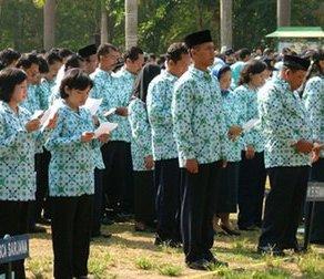 http://jobsinpt.blogspot.com/2012/04/seleksi-honerer-daerah-bermasalah-siapa.html
