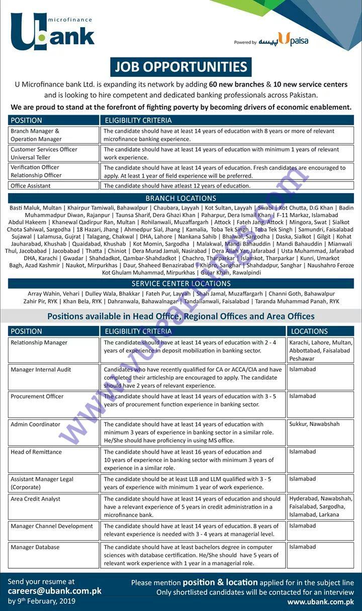 Job in Ubank Opportunities