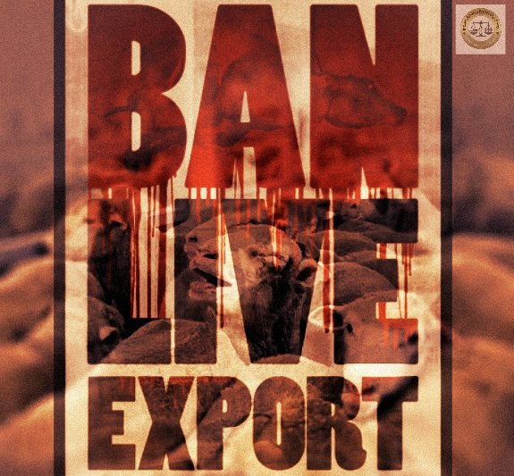 BAN  LIVE  EXPORT ON OUR PLANET