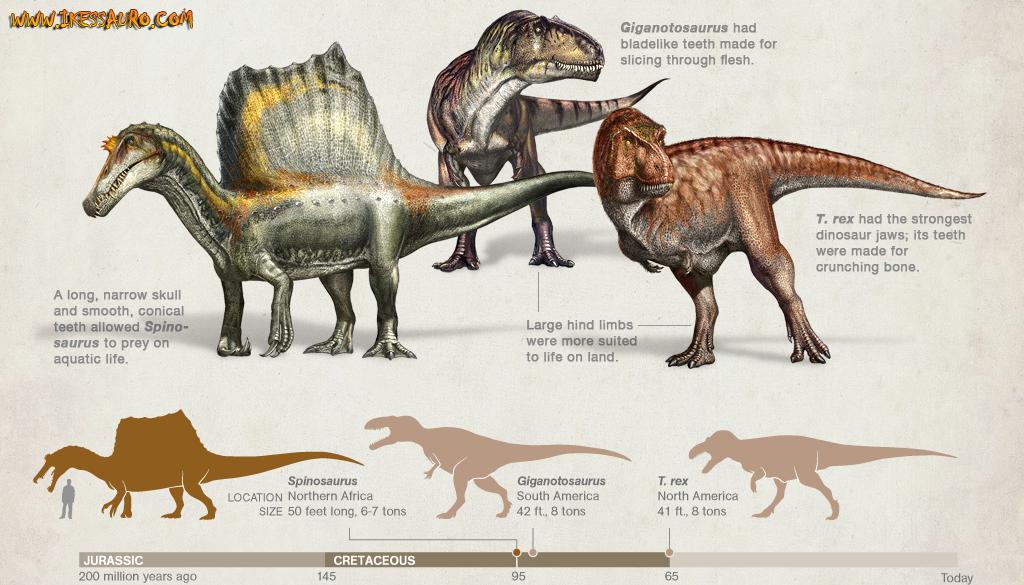 Biggest Carnivorous dinosaurs