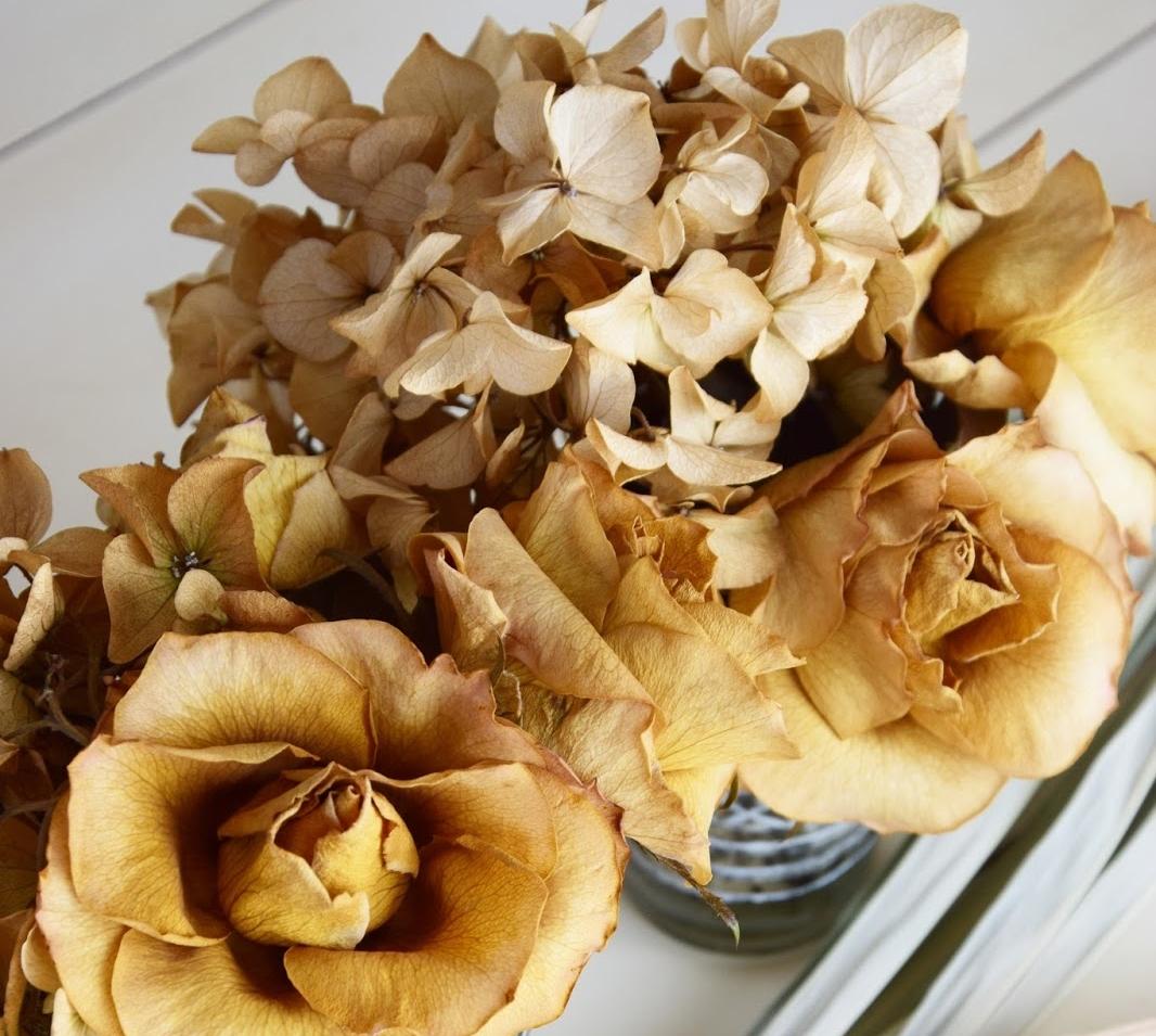 Hortensien Seidig Weich Trocknen Ganz Einfach Und Auf Dauer