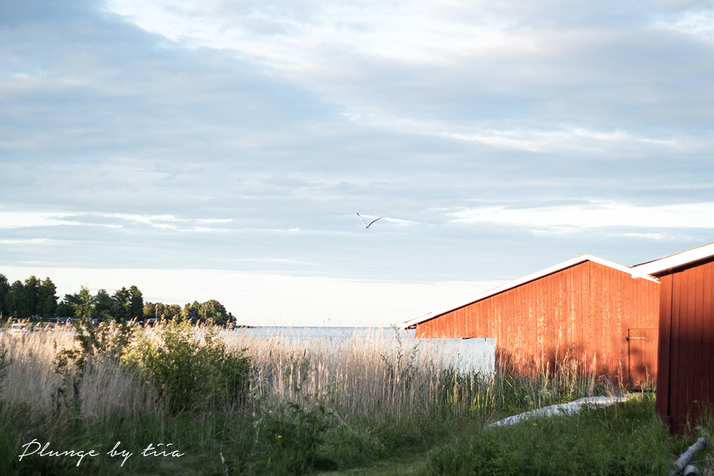 Summer in Sundsvall - Plunge by tiia