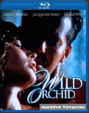 Wild Orchid 1989 UNRATED Dual Audio Hindi 480p BluRay 300mb