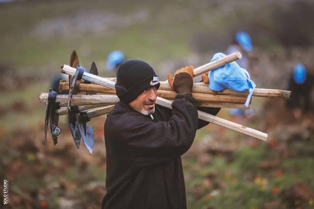 الأولى من نوعها في سوريا: حملة المليون شجرة بالسويداء.. ردا على التحطيب الجائر للغابات (صور)