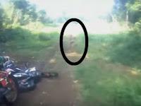 Makhluk Kerdil Mirip Hobbit Ini Tertangkap Kamera di Hutan Aceh, Benarkah Ia dari Suku Mante yang Misterius?