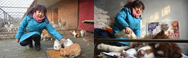Wanita Ini Selamatkan Ribuan Anjing Amp Kucing Selama
