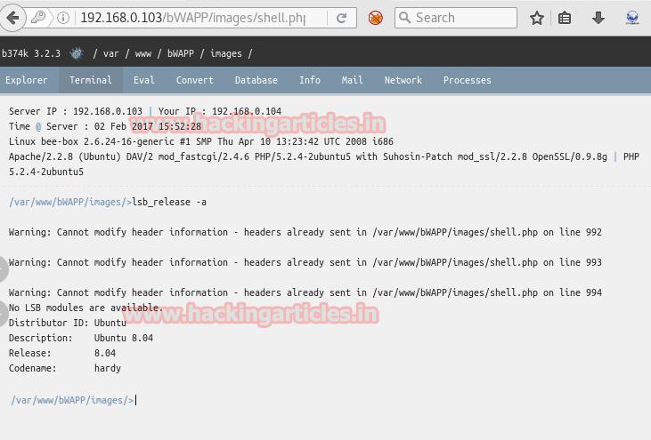 Web Shells Penetration Testing (Beginner Guide)