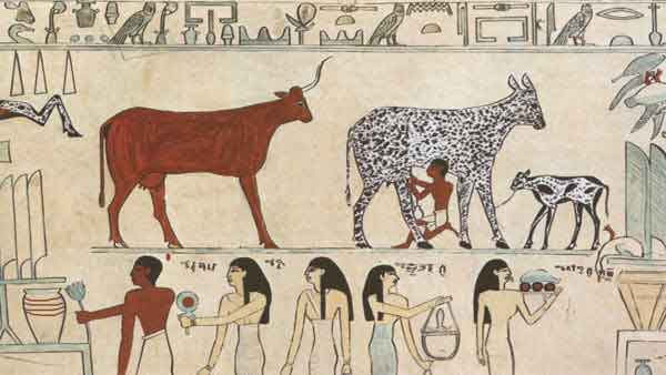 Grade 5 Ancient Egypt Worksheet