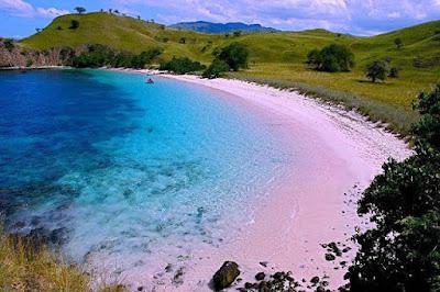 fakta-unik-dan-aneh-di-indonesia, pink-beach-pulau-komodo