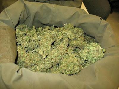 Συνελήφθησαν δύο ημεδαποί με 536,6 γρ. κάνναβης και 124 ναρκωτικά χάπια