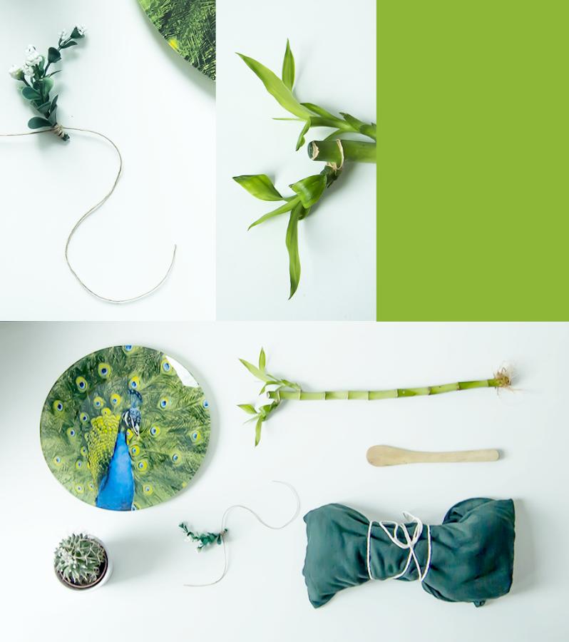 inspiración en color verde, knolling