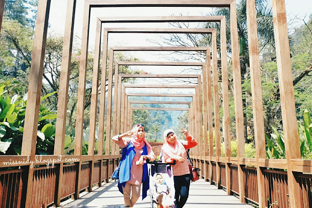 jembatan iconic di maribaya natural hot spring resort lembang