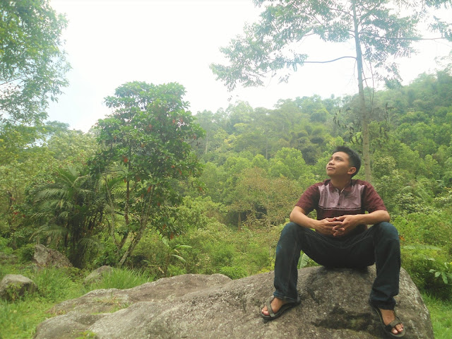Nikmati suasana sejuk dan tenang di Pondok Halimun Sukabumi. Recomended banget nih buat yang pengen merilekskan pikiran