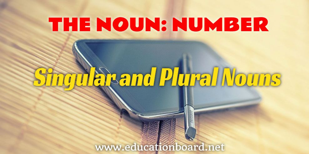 THE NOUN AND NUMBER