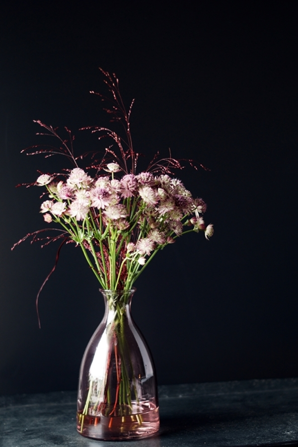 Blog + Fotografie by it's me! - Sterndolde Astrantia in rosafarbener Vase