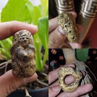 Cincin Kuno Kyai Uyud