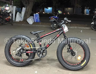 "Fatbike For Kids 20"" by Wimcycle"