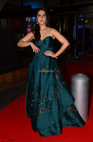 Raashi Khanna in Dark Green Sleeveless Strapless Deep neck Gown at 64th Jio Filmfare Awards South ~  Exclusive 018.JPG