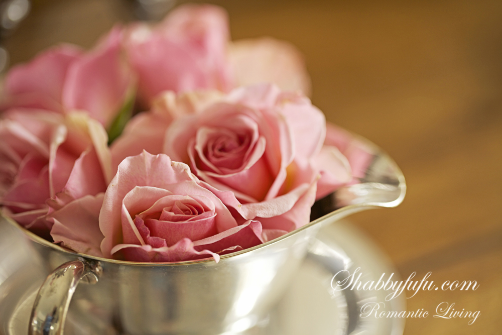 pink roses in a silver cup