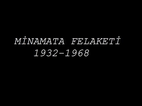 Minamata felaketi