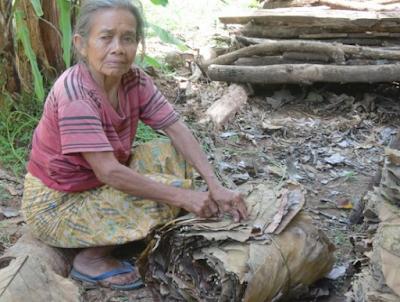 Sebuah Kisah Nenek Pemungut Daun Ini, Anda Pasti Nangis Membacanya
