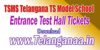TS Model School Entrance Test Hall Tickets Download