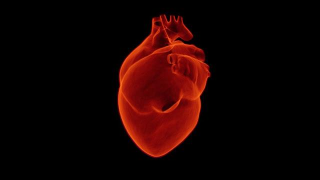 Diet untuk penyakit jantung