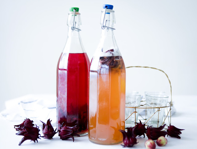 Fresh Hibiscus Kombucha Tea