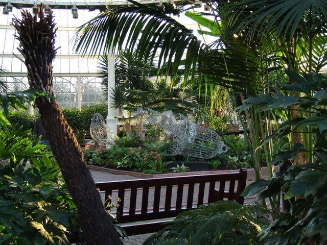 Глазго, зимний сад (вход бесплатный)