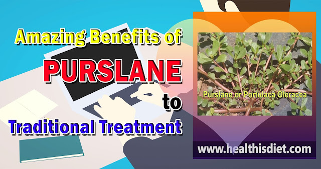 Amazing Benefits of Purslane