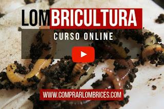 Curso Online de Lombricultura