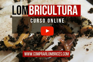 Curso Online por Youtube de Lombricultura