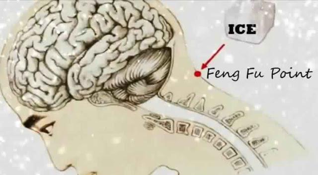 Mettez la glace sur un point spécifique situé sur le cou : vous allez remarquer quelque chose étonnant qui va arriver à votre corps!