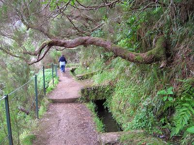 Camino de la Levada das 25 Fontes, Madeira, Portugal, La vuelta al mundo de Asun y Ricardo, round the world, mundoporlibre.com
