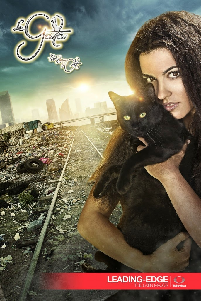 The Stray Cat: Season 1 Mexican TV Series (Hindi Dubbed) 720p Web-DL (All Episodes Added)