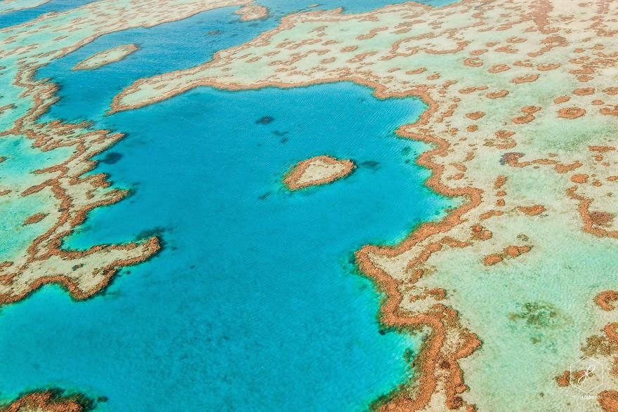Heart Reef, Great barrier Reef, QLD  - Man Travels 40,000km Around Australia and Brings Back These Stunning Photos