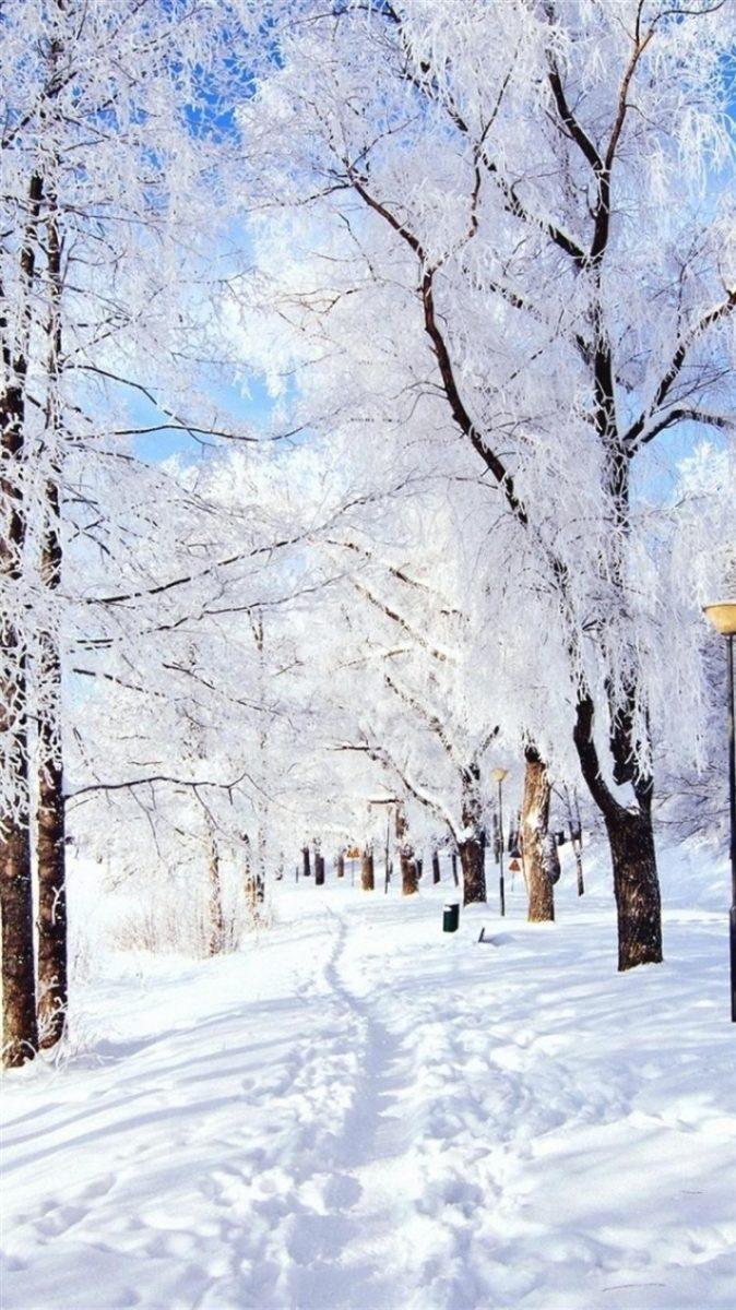 winter iphone wallpaper 2