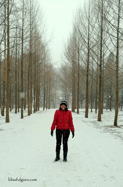 Nami Island Winter : island, winter, Blissfulguro:, South, Korea:, Island, Garden, Morning, Winter, Wonderland