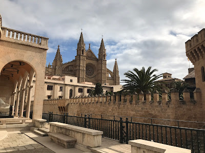 the cathedral and palm trees in Palma