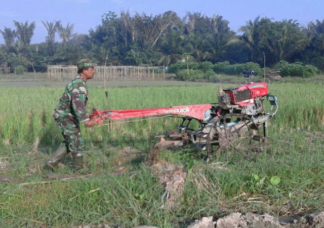 Untuk Meningkatkan Swasembada Pangan, Babinsa Koramil 02/Selesai Bantu Petani Bajak Sawah