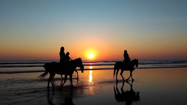 chevaux plage coucher de soleil