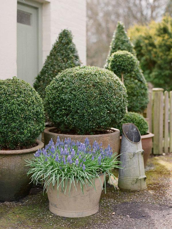 Walk In Garden Box: Vanessa Jackman: Weekend Life....A Walk In The English