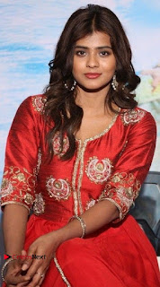 Actress Heba Patel Latest Stills in Red Dress at Mister Movie Trailer Launch Event  0009.jpg