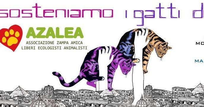 Eventi - Sosteniamo i gatti di Azalea