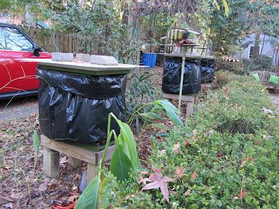 bee, bee cozy, beekeeping, counting board, debris, dusting, phoretic mites, powdered sugar, Small Hive Beetle, varroa, ventilation,